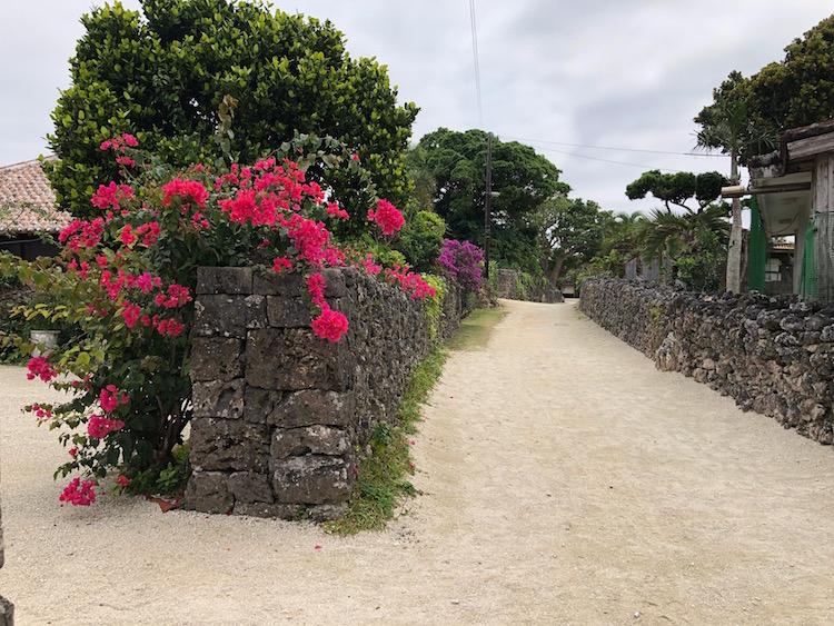 竹富の村落の風景